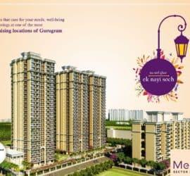 MRG The Meridian Sector 89 Gurugram